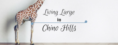 Living Large in Chino Hills, California