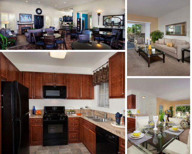 carmel at terra vista recently remodeled apartment homes. living room, clubhouse, kitchen and much more features built into this community